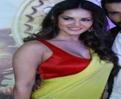 SUNNY LEONE ULTRA COLLECTION FULL Download watch from sunny leone filmasin sex vdieosarse and xxx hd video download com3gp sex mms xxx urmila mjapanese